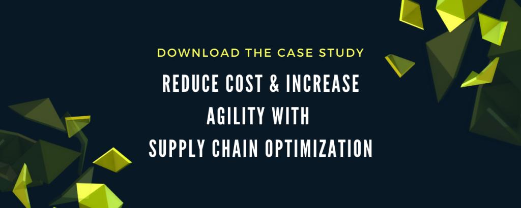 Case Study: Supply Chain Optimization